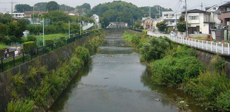 鶴川駅周辺の鶴見川